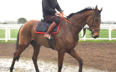 A racecourse work out