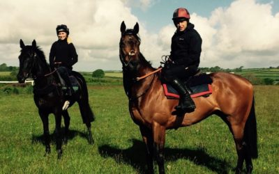 On the gallops- Sidbury Fair and Howardian Hills
